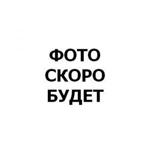 Черевко Егор Владимирович